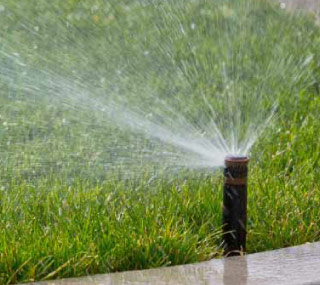 service irrigation