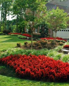 service landscaping