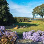 Miller Poolside Landscape