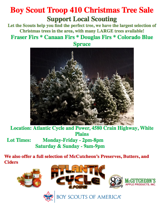 Boy Scout Troop 410 Christmas Tree Sale